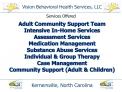 Vision Behavioral Health Services, LLC