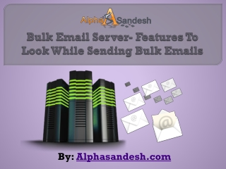 Bulk Email Server- Features To Look While Sending Bulk Email