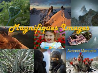 Magnifiques Images