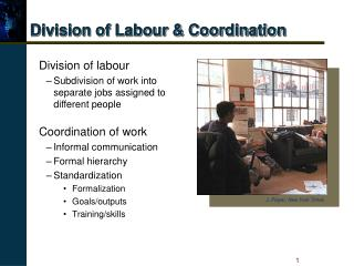 Division of Labour  Coordination