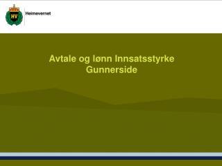 Avtale og l nn Innsatsstyrke Gunnerside