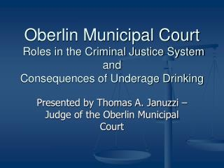 Oberlin Municipal Court  Roles in the Criminal Justice System and Consequences of Underage Drinking
