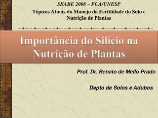 Prof. Dr. Renato de Mello Prado
