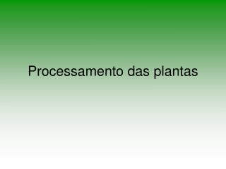 Processamento das plantas