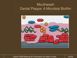 Mouthwash Dental Plaque: A Microbial Biofilm