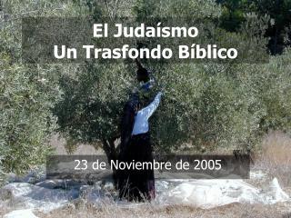El Juda smo Un Trasfondo B blico