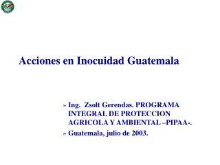 Acciones en Inocuidad Guatemala        Ing.  Zsolt Gerendas. PROGRAMA INTEGRAL DE PROTECCION AGRICOLA Y AMBIENTAL  PIPAA