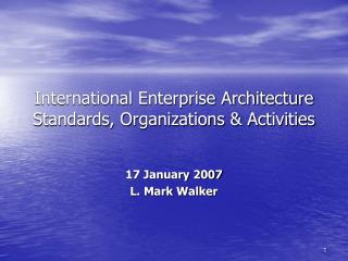 International Enterprise Architecture Standards, Organizations  Activities