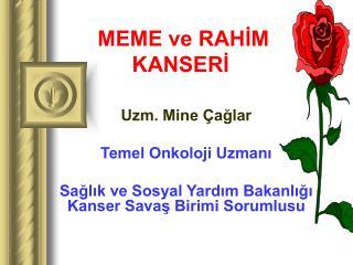 MEME ve RAHIM KANSERI