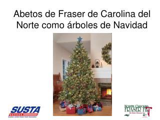 Abetos de Fraser de Carolina del Norte como  rboles de Navidad