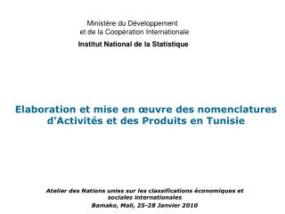 Atelier des Nations unies sur les classifications  conomiques et sociales internationales Bamako, Mali, 25-28 Janvier 20