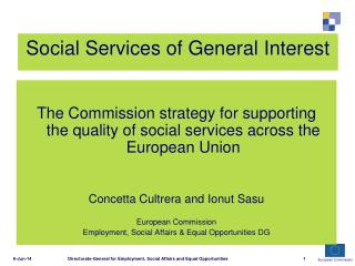 Social Services of General Interest
