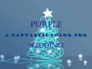 a romantic purple wedding