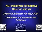 Andrea M. Denicoff, RN, MS, CANP Coordinator for Palliative Care Initiatives