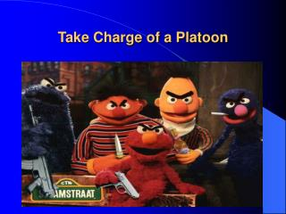 Take Charge of a Platoon
