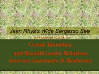 Jean Rhyss Wide Sargasso Sea