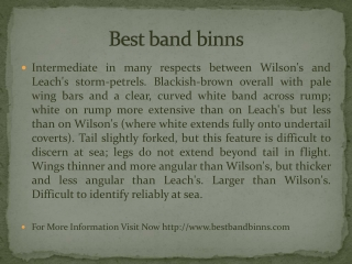 Best band binns