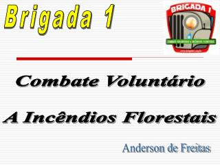 Combate Volunt rio  A Inc ndios Florestais