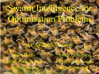 Swarm Intelligence for Optimisation Problems   ACAT 2002 Moscow