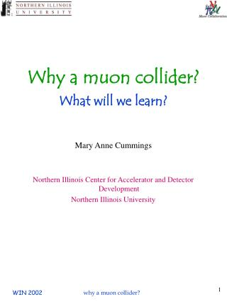 Why a muon collider? What will we learn?