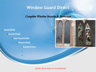 Window Shield