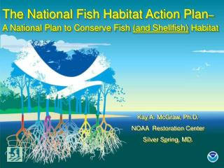 The National Fish Habitat Action Plan