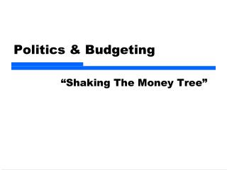 Politics  Budgeting