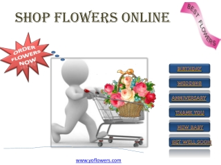 Flower Delivery Online