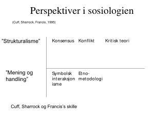 Perspektiver i sosiologien