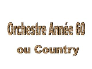 Orchestre avec sonorisation mobile, id al pour animation, cocktail, soir e 60 ou country