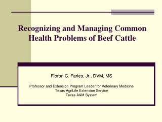 Recognizing and Managing Common Health Problems of Beef Cattle