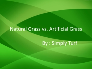 Natural Grass vs. Artificial Grass