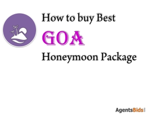 buy goa holiday packages in 2013
