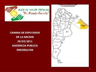CAMARA DE DIPUTADOS  DE LA NACION  29