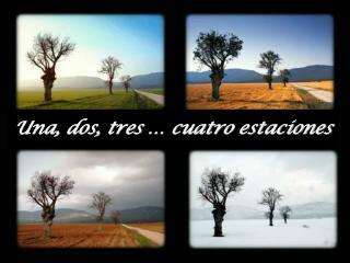Una, dos, tres   cuatro estaciones