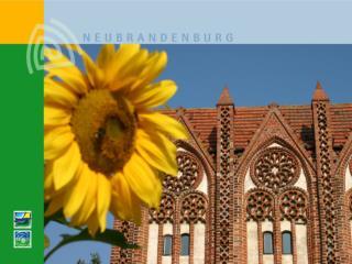 Erfahrungsbericht der Stadt Neubrandenburg  Einf hrung der Doppik zum 01.01.2008