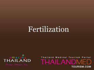 thailand medical tourism_fertilization