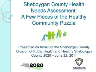 Sheboygan County Health Needs Assessment:  A Few Pieces of the Healthy Community Puzzle