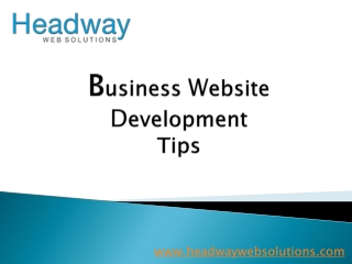 Business website development