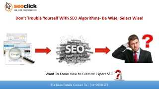 Best SEO Training Institute