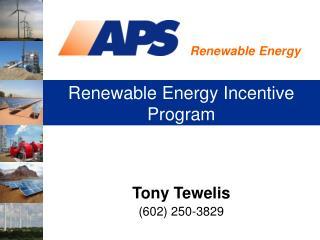 Renewable Energy Incentive Program