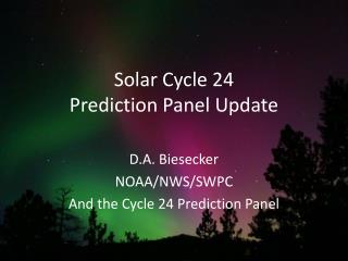 Solar Cycle 24 Prediction Panel Update