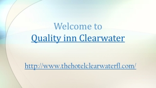 Quality inn clearwater