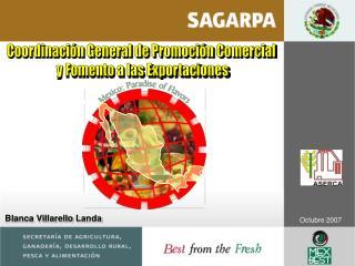 Coordinaci n General de Promoci n Comercial  y Fomento a las Exportaciones