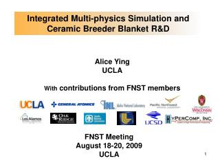 Integrated Multi-physics Simulation and Ceramic Breeder Blanket RD