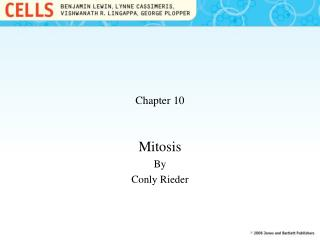 Mitosis By Conly Rieder