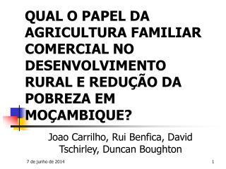 QUAL O PAPEL DA AGRICULTURA FAMILIAR COMERCIAL NO DESENVOLVIMENTO RURAL E REDU  O DA POBREZA EM MO AMBIQUE