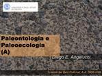 Scienze dei Beni Culturali, A.A. 2008-2009