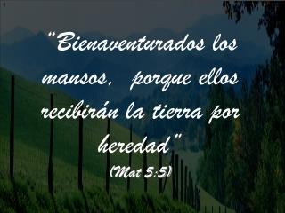 Bienaventurados los mansos,  porque ellos recibir n la tierra por heredad   Mat 5:5