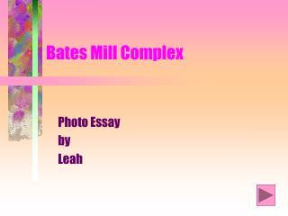 Bates Mill Complex